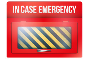 Empty red emergency box with in case of emergency breakable glass. Vector illustration Isolated on white background. Editable.
